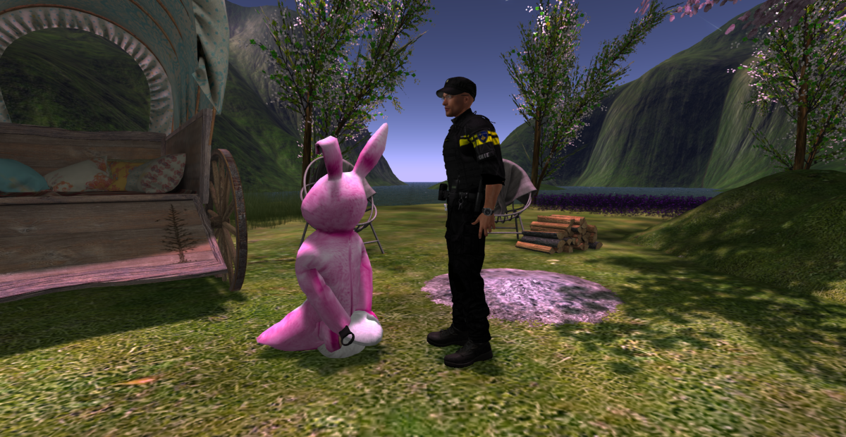 bunny arrested_006